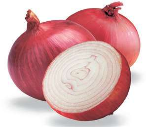Onion - Natural Flu Protection - Rays of Wisdom