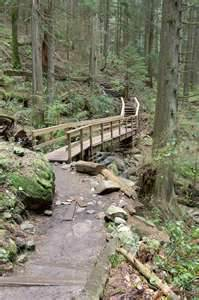 Wooden Bridge - Rays of Wisdom - Relationship Healing - Building Bridges