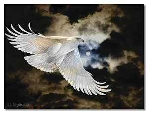White Eagle - On Eagle's Wings - Rays of Wilsdom - Astrology on the Healing Journey