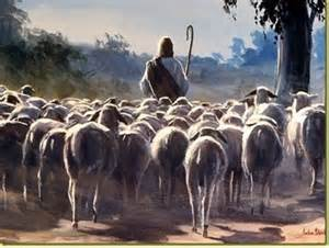 Rays Of Wisdom - War And Peace Among Nations - The Good Shepherd