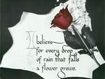I believe - Rays of Wisdom - Words of Wisdom for Hope & Encouragement
