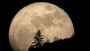 wesak-moon2.jpg
