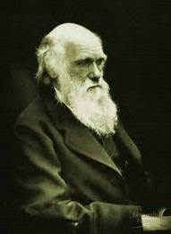 Rays Of Wisdom – Our World In Transition – Ideas That Changed Our World – Charles Darwin - One Of The Fathers Of The Evolutionary Theory